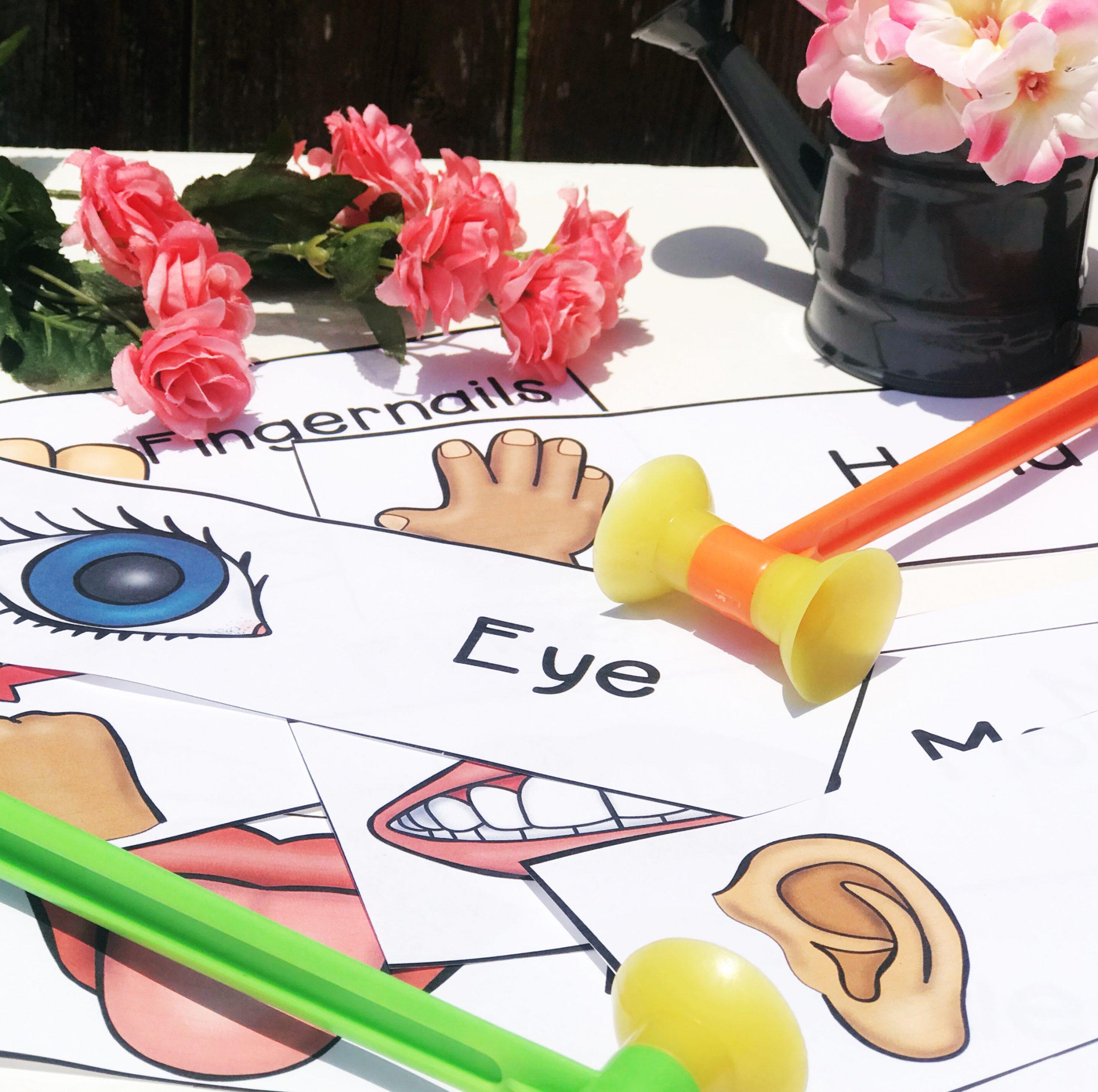 Body Part Vocabulary Activity